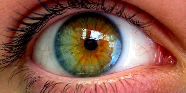 Güzeli Gören Gözleri Gördüm...